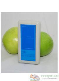 Аппарат магнитотерапии АМнп-02 «Солнышко»