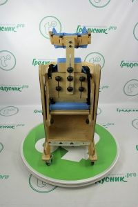 Кресло для реабилитации Bingo Vitea Care